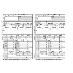 令和元年版 給与所得の源泉徴収票EXCELテンプレート(川崎市提供)